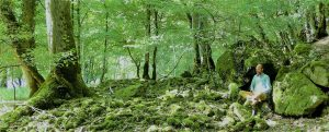 Energétique taoïste - Qi Gong - Méditations @ Environs de Vézelay